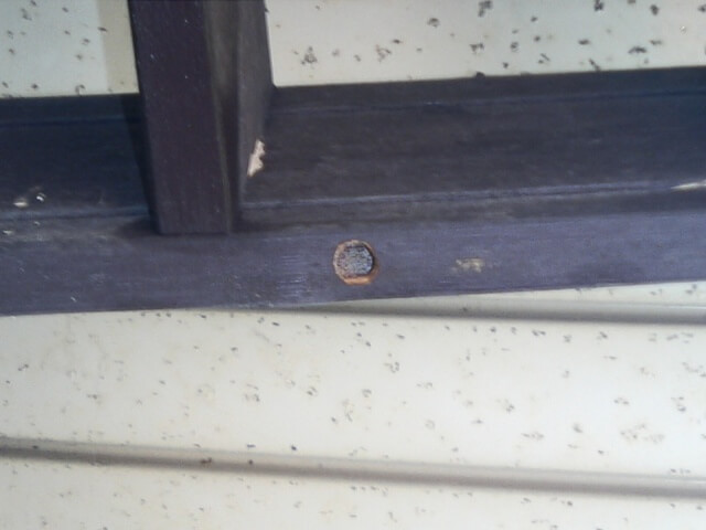 クマバチの開けた穴